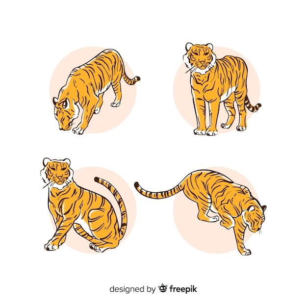 Hand getrokken stijl tijger collectie Gratis Vector