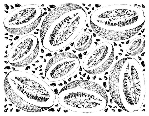 Hand getrokken van chiverre fruit op witte achtergrond Premium Vector