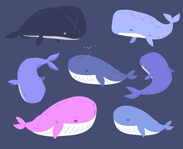 Hand getrokken walvis Premium Vector