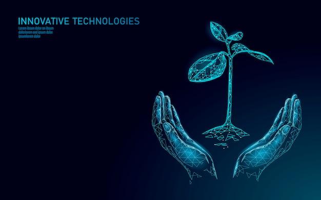 Handen die het ecologische abstracte concept van de installatiespruit houden. 3d render zaailing boombladeren. sparen planeet natuur milieu groeien leven eco veelhoek driehoeken laag poly illustratie Premium Vector