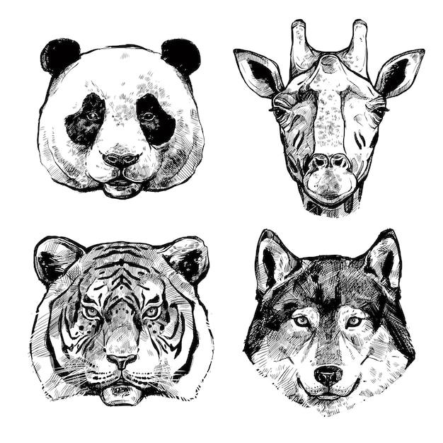 Handgetekende dierenportretten Gratis Vector