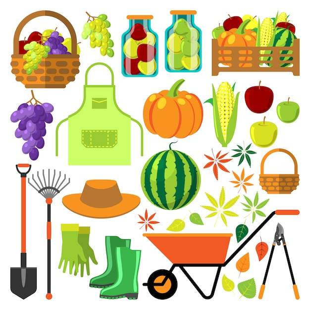 Harvest flat set Premium Vector