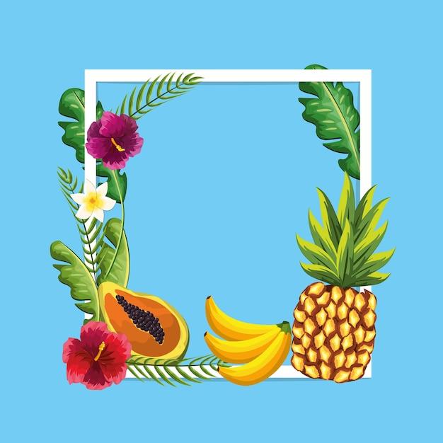 Heerlijk fruit met schoonheidsplanten en bloemen Premium Vector