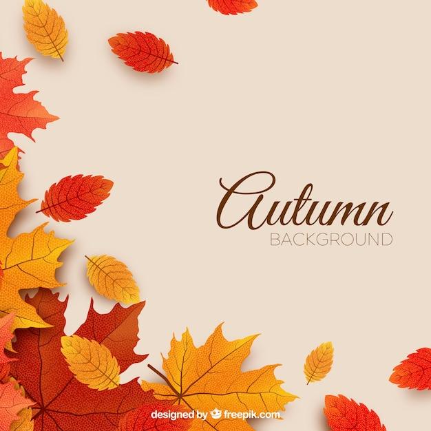 Herfst achtergrond met Gratis Vector