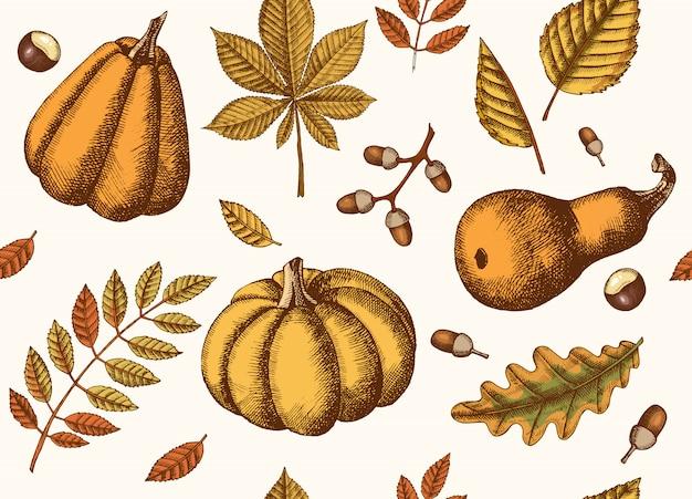 Herfst naadloze patroon met hand getrokken bladeren en pompoenen. bladeren van esdoorn, berk, kastanje, eikel, essenboom, eik. schetsen. Premium Vector