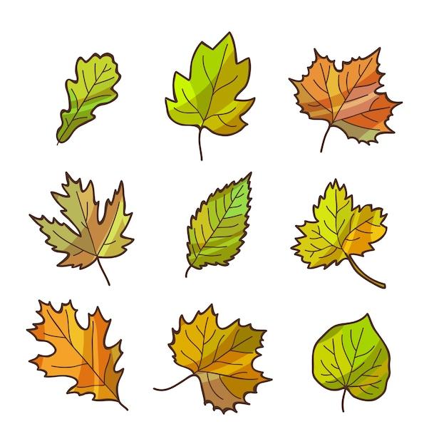 Herfst of najaar bladeren instellen, geïsoleerd op wit. cartoon vlakke stijl. Premium Vector