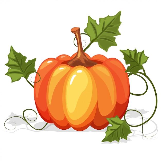 Herfst oranje pompoen groente Premium Vector