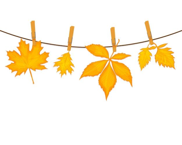 Herfstbladeren vector achtergrond Premium Vector