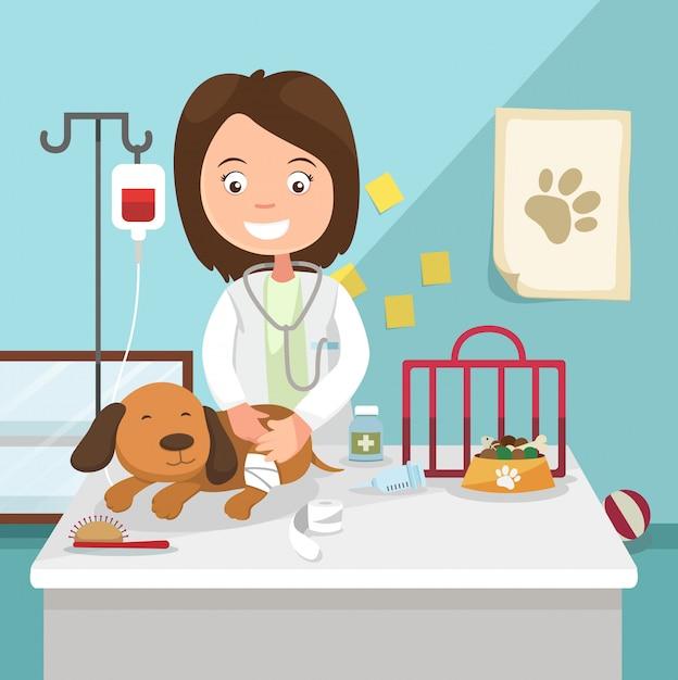 Het idee van vrouwelijke dierenarts die illustratie geneest Premium Vector