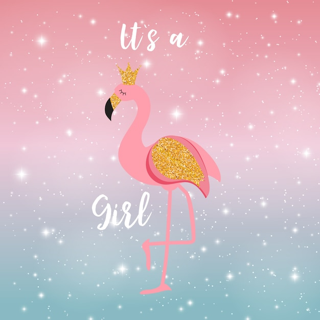 Het is een meisje flamingo princess op night sky Premium Vector