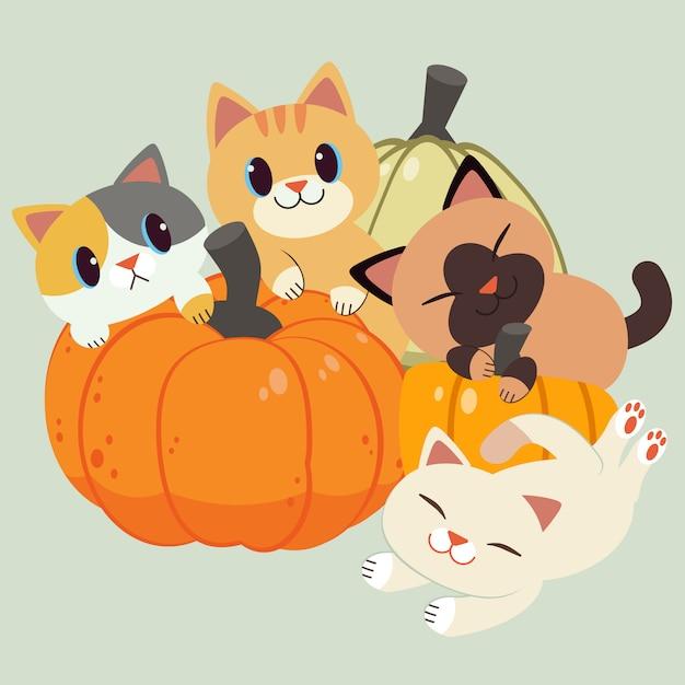 Het karakter van schattige kat en vriend zitten en spelen met een pompoen. Premium Vector