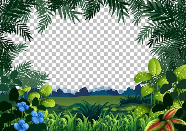 Het lege landschap van de natuurscène op transparante achtergrond Gratis Vector