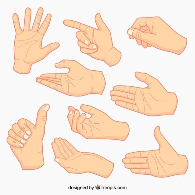 Het verzamelen van de hand schetsen Gratis Vector