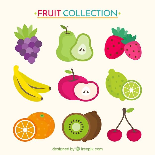 Het verzamelen van smakelijke vruchten in plat design Gratis Vector