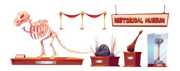 Historisch museum met dinosaurusskelet en archeologische tentoonstellingen. tekenfilm verzameling vondsten van paleontologie en archeologie, prehistorische dieren en primitieve gereedschappen van holbewoner Gratis Vector