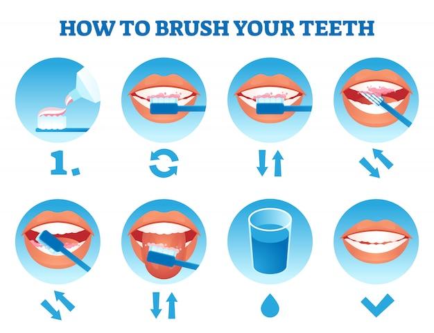 Hoe u uw tandenillustratie poetst. eenvoudig educatief zorgproces Premium Vector