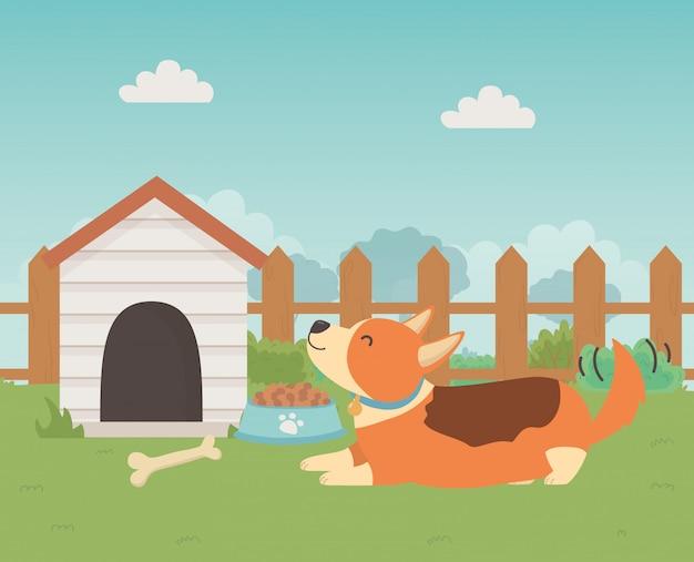 Hond cartoon ontwerp vector illustrator Gratis Vector