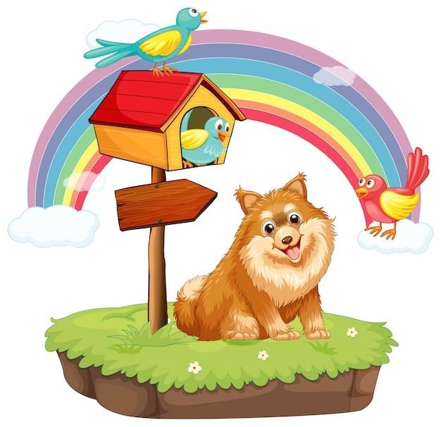 Hond en vogelhuis Gratis Vector