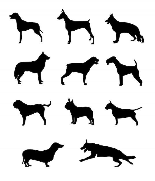 Hond silhouet Premium Vector