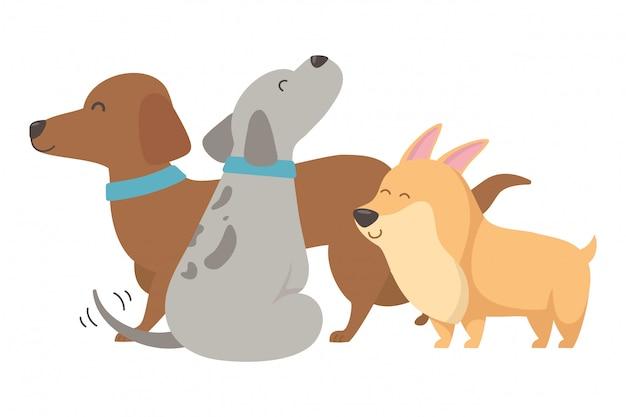 Honden cartoons Gratis Vector