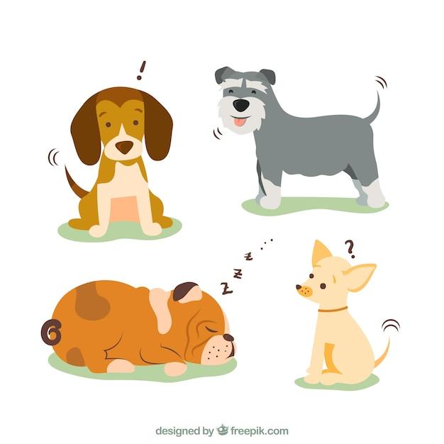 Hondenrassen illustratie Gratis Vector