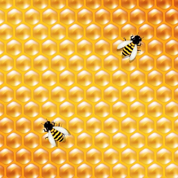 Honing achtergrond en bijen Premium Vector