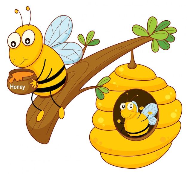 Honingbij en kam Gratis Vector