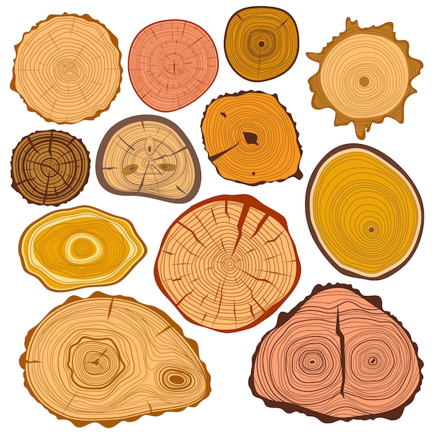 Hout slice textuur treee cirkel gesneden grondstof set Premium Vector
