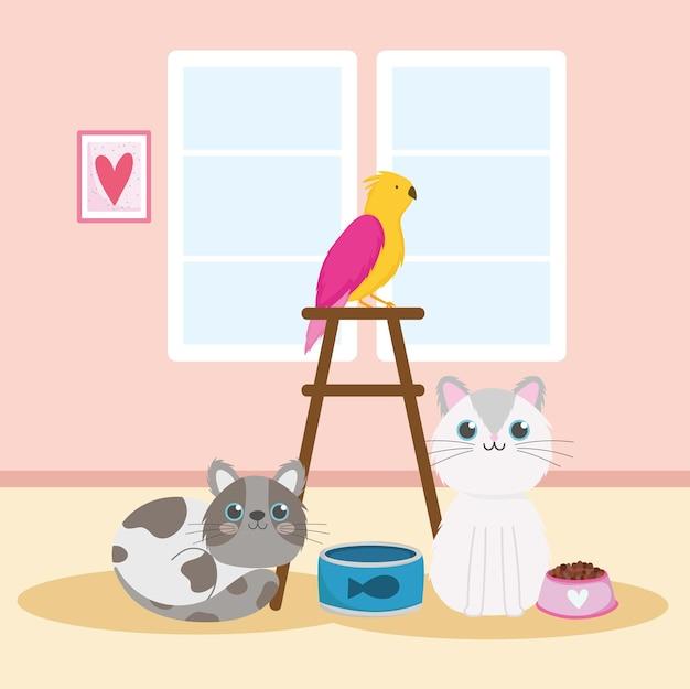 Huisdieren katten papegaaienvoer ingeblikte vis huisdieren vector illustratie Premium Vector