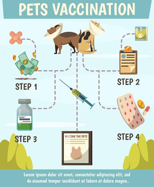 Huisdieren verplichte vaccinatie orthogonaal stroomdiagram Gratis Vector