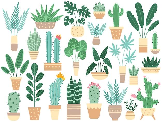 Huisplanten in potten. aard kamerplanten, decoratie ingemaakte kamerplant en bloem plant planten in pot geïsoleerd Premium Vector