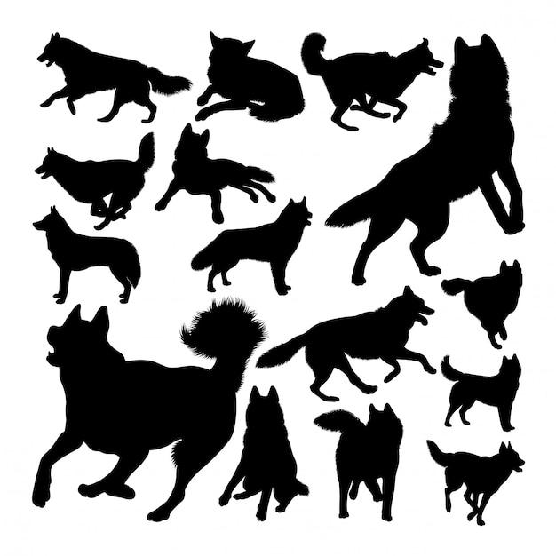 Husky hond dierlijke silhouetten Premium Vector