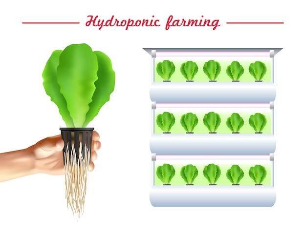 Hydroponics system poster Gratis Vector