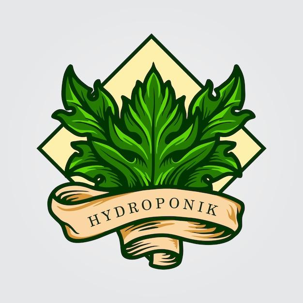 Hydroponik leaf logo met lint Premium Vector
