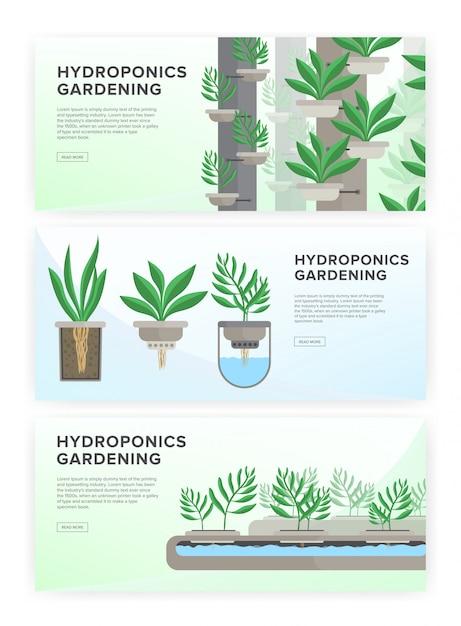 Hydroponisch systeem, tuiniertechnologie. collectie van horizontale banners met plaats voor tekst. Premium Vector