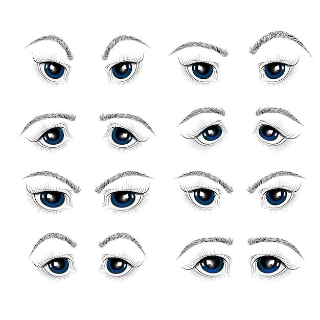 Illustratie met de ogen, wimpers en wenkbrauwen van de vrouw. Premium Vector