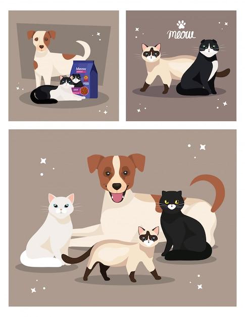 Illustratie set van schattige honden en katten Premium Vector