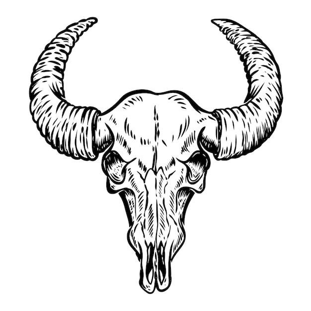 Illustratie van buffelsschedel op witte achtergrond. element voor poster, embleem, teken, t-shirt. illustratie Premium Vector