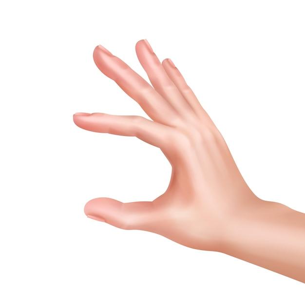 Illustratie van de hand die iets meet of toont Gratis Vector