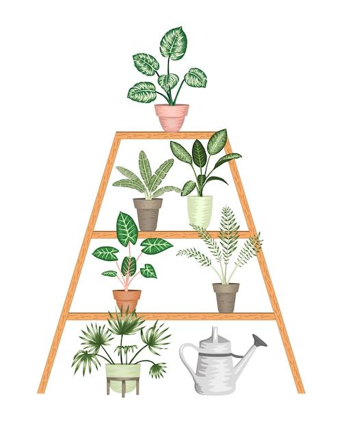 Illustratie van tropische kamerplanten in potten op een tribune geïsoleerd. heldere realistische monstera, alocasia, dieffenbachia, cordyline. Premium Vector