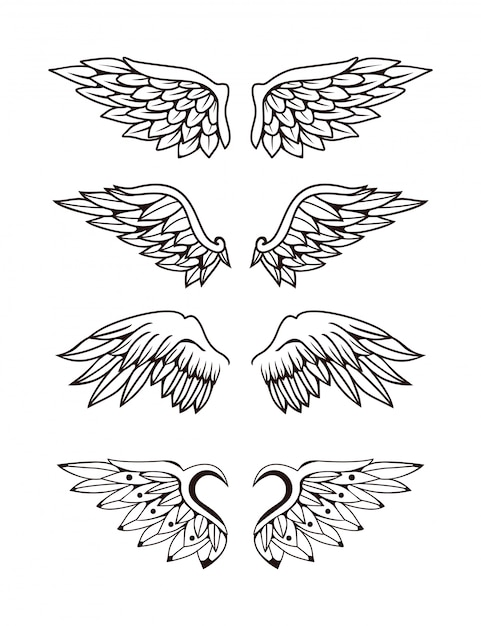 Illustratie van wings collectie set Premium Vector