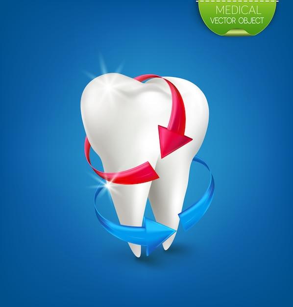 Illustratie: witte tand op een blauwe achtergrond met een rode en blauwe pijl. Premium Vector