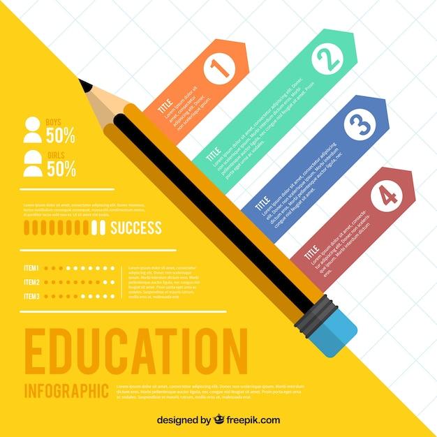 Infographic voor onderwijsvraagstukken Gratis Vector