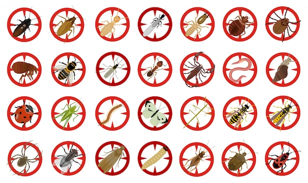 Insect van insect vector cartoon ingesteld pictogram. vectorillustratie insect kever. geïsoleerde cartoon pictogram bug en vlieg kever. Premium Vector