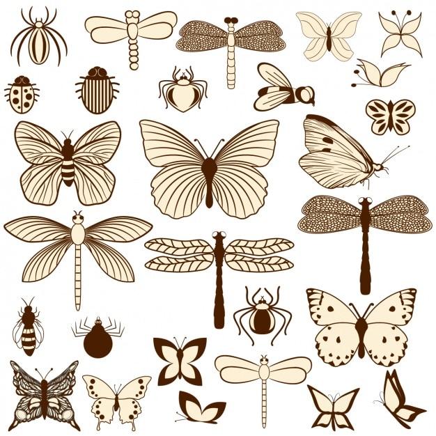 Insecten collectie Gratis Vector