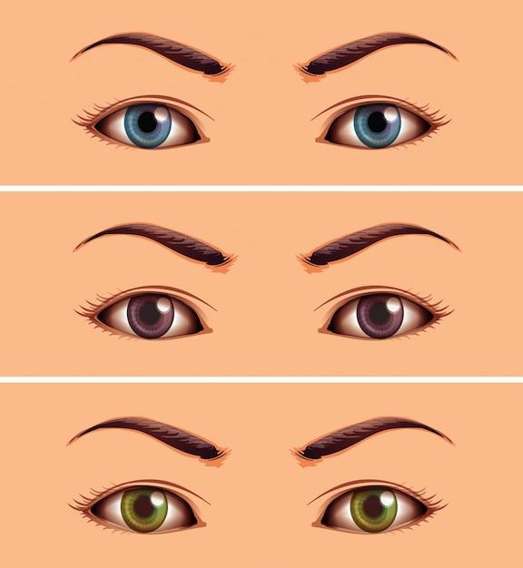 Instellen of het gebied van menselijke close-up ogen Gratis Vector