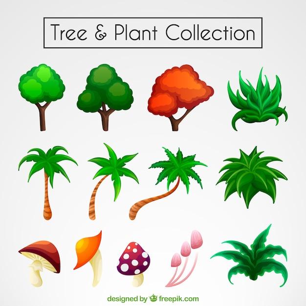 Inzameling van kleurrijke bomen en planten Gratis Vector