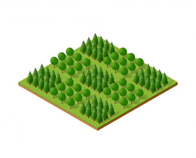Isometrische 3d bomen bos camping natuurelementen Premium Vector