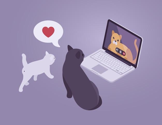 Isometrische katten internet gesprek Premium Vector