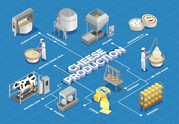 Kaasproductie isometrisch stroomschema geïllustreerd proces van melkopbrengst en pasteurisatie tot fermenteren, persen en rijpen Gratis Vector